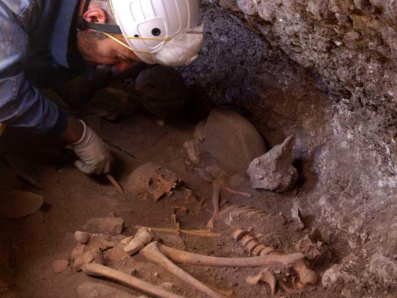 Píndola 1 – L'estudi de l'ADN fòssil i el canvi de paradigma en l'evolució humana