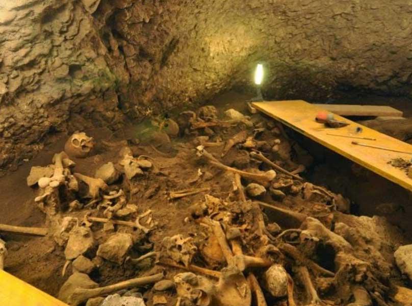 Anàlisi d'ADN a la cova d'El Mirador
