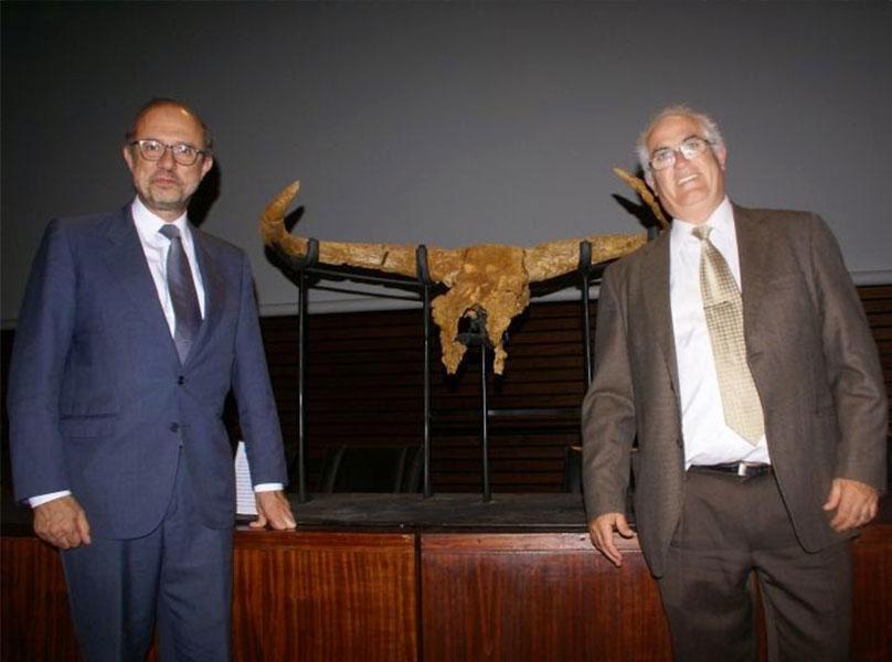 Píndola 6 – El crani d'ur més antic trobat fins ara