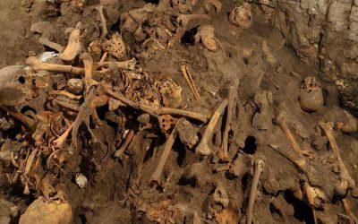 Píndola 3 – Anàlisi de l'ADN de la Cova d'El Mirador (Ibeas de Juarros, Burgos)